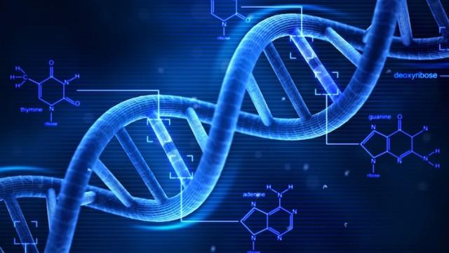 Riparazione del Dna, ricercatori italiani svelano il ruolo di un gene