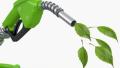 Biometano nelle reti di gas naturale, l'inchiesta pubblica Uni verso la fase finale