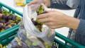 Bioplastiche, dal 2017 in Francia obbligo di sacchetti compostabili nella GDO
