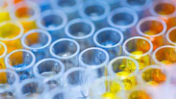 Agenti chimici dannosi per l'uomo: una proposta di classificazione