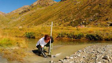 Pesticidi ammessi in agricoltura biologica: che effetto hanno sull'acqua?