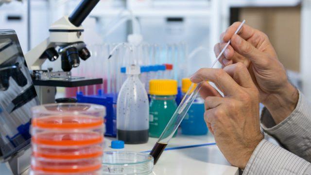 Sostanze chimiche pericolose: pubblicate le sanzioni per violazioni su esportazione ed importazione